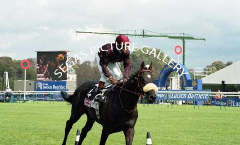 Racehorse Le Miracle with Jockey Dominique Boeuf